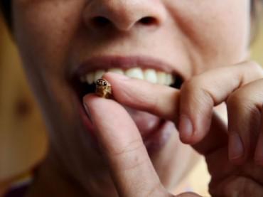 Tutti froci con la cultura degli altri: insetti e larve nelle nostre tavole