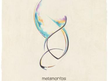 Metamorfosi di una crisalide: dal colore al bianco