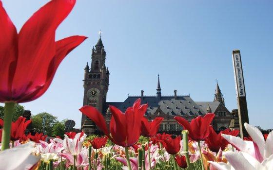 Il Palazzo della Pace