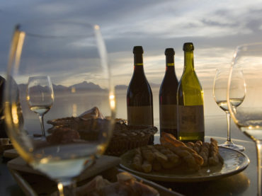 La scienza del piacere: Vinome rivela il vino che il tuo DNA vuole