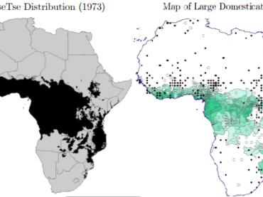 La mosca TseTse e lo sviluppo africano