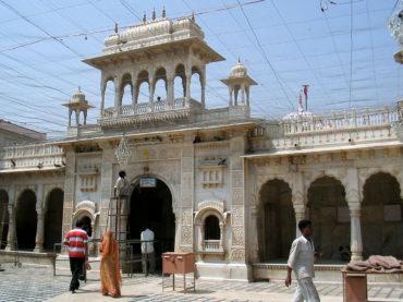 #IlGiroDelMondo: Karni Mata, il tempio dei topi