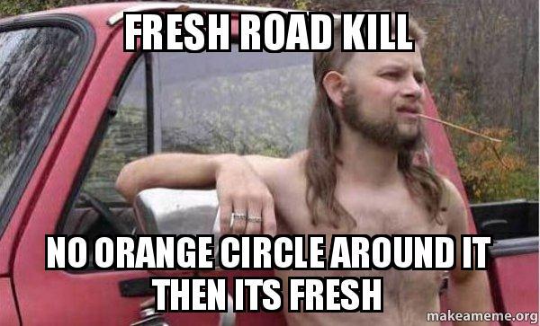 fresh-road-kill-1