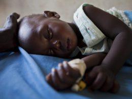 Il problema delle zanzare e come risolverlo