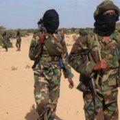 Terroristi e clan, i diversi volti di al Shabaab