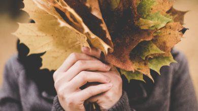 5 letture per un autunno indimenticabile