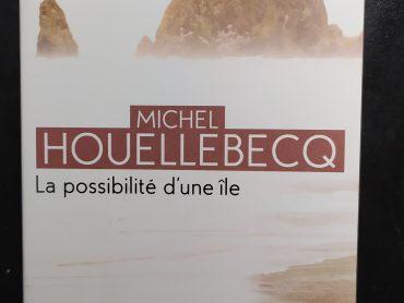 Affrontare Houellebecq per superare la quarantena: la possibilità di uno schermo